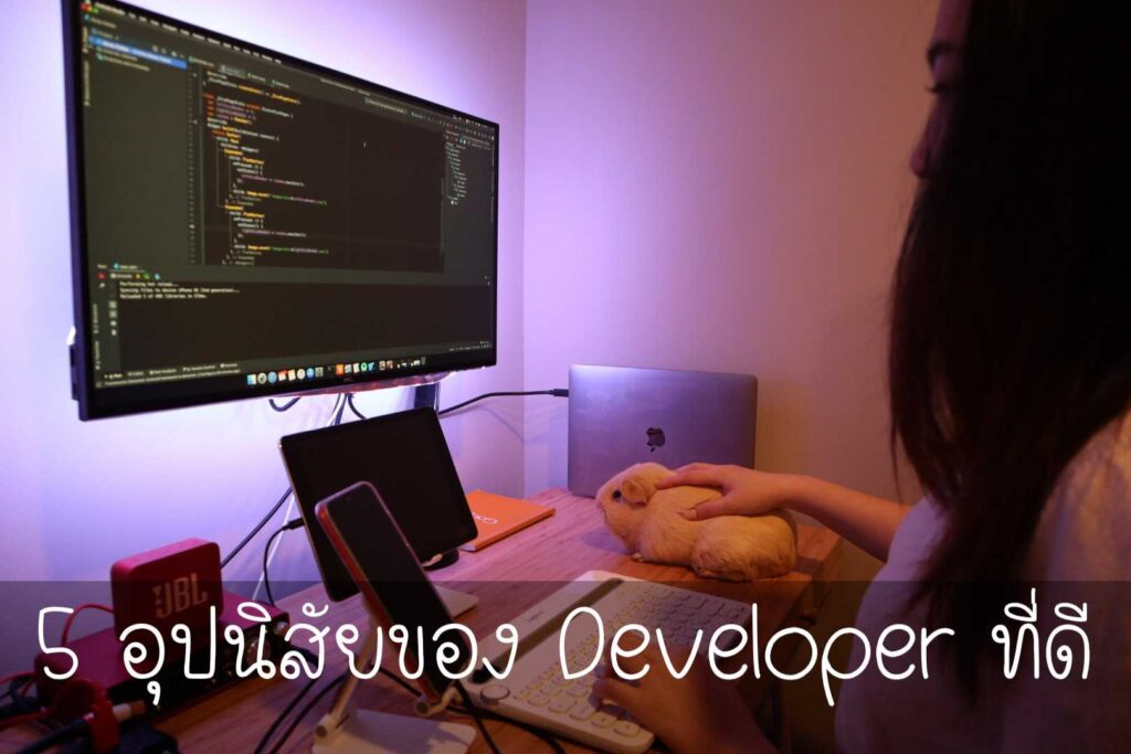 developer-โปรแกรมเมอร์